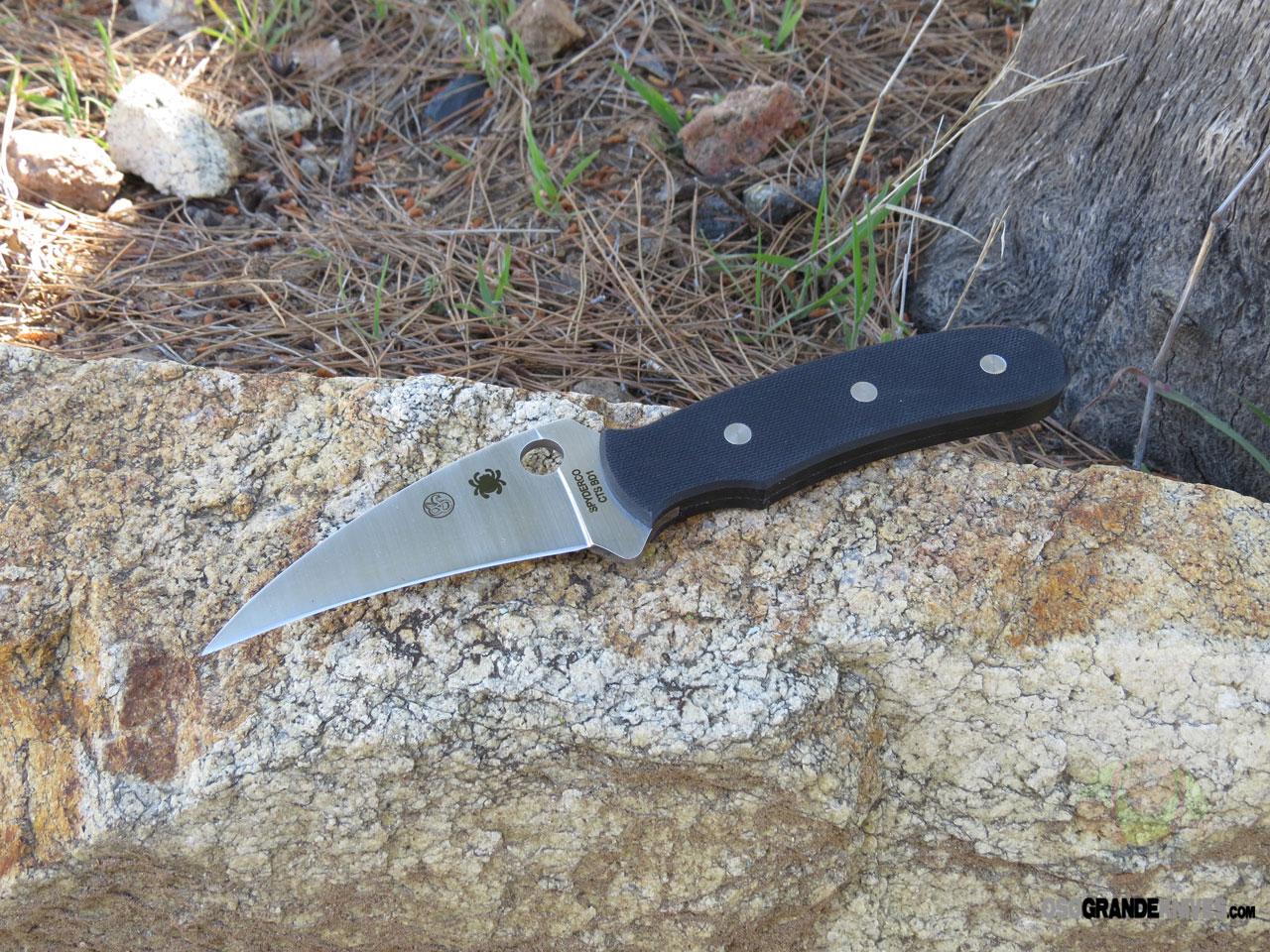 Spyderco Reverse Fixed Blade Knife G 10 3 5 Inch Blade